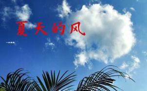 《夏天的风》吉他谱_温岚_吉他弹唱视频演示示范_7t吉他教室