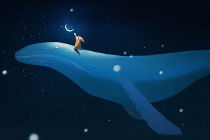 月亮鲸鱼吉他谱_房东的猫_G调版吉他弹唱谱_吉他专家