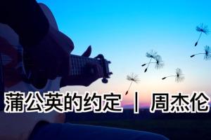 《蒲公英的约定》吉他指弹视频演奏_指弹吉他谱_标准独奏谱