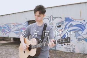 《反方向的钟》吉他弹唱伴奏视频 cover by大树音乐