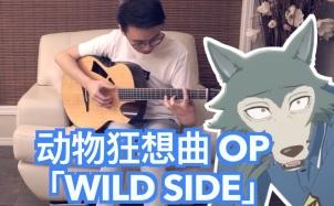 动物狂想曲OP《Wild Side》吉他谱_指弹独奏谱_指弹视频