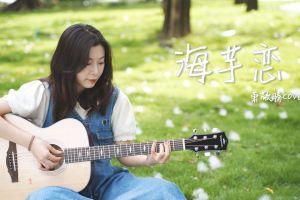 《海芋恋》吉他弹唱视频演示,这首歌太甜了!